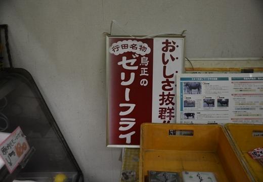 161102-174458-行田 埼玉(さきたま)と足袋蔵三昧 (469)_R