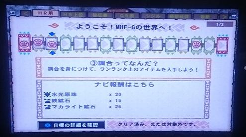 mhf10.jpg