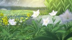 tales02-1 (53)