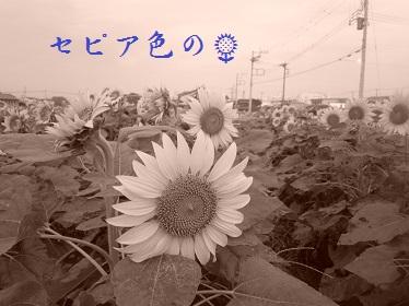 PA020022.jpg