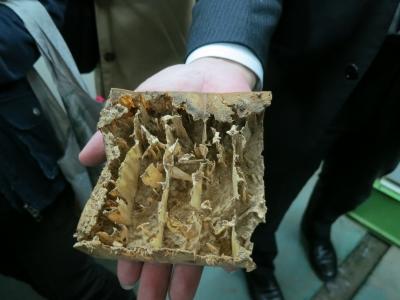 越井木材工業1042
