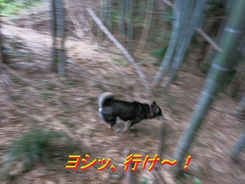 10_20160416141409da8.jpg
