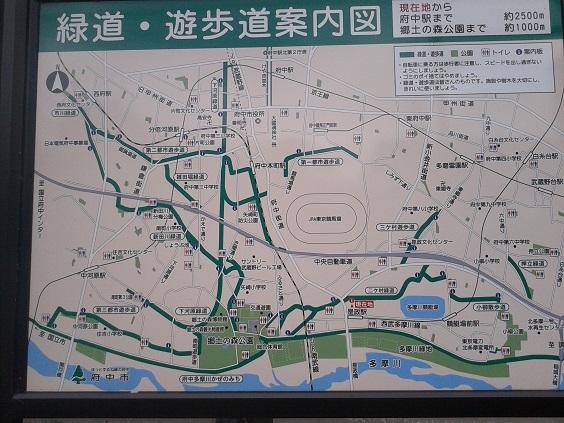 郷土の森地図