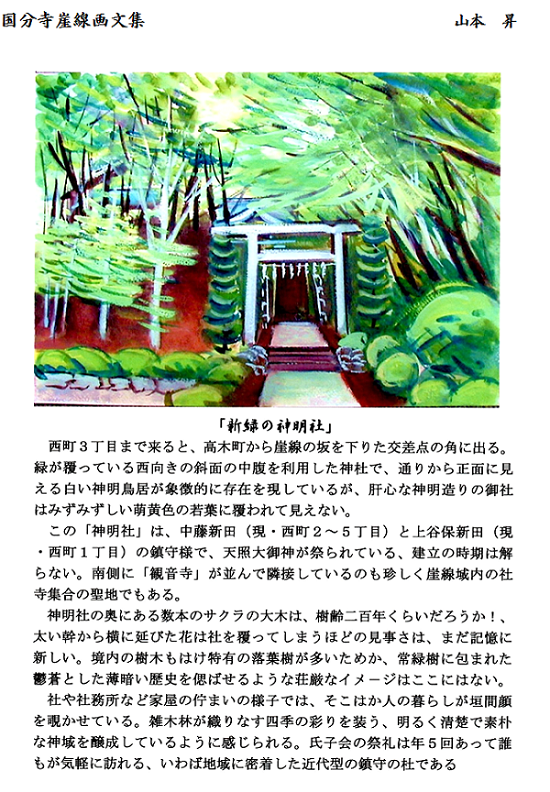 6月会報国分寺崖線