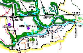 8月会報国分寺崖線と湧き水1