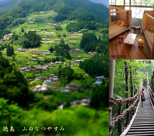 徳島夏休み1-1