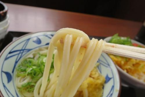 丸亀製麺㉛ (5)_R