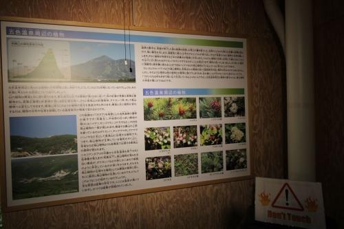 五色温泉インフォメーションセンター (15)_R