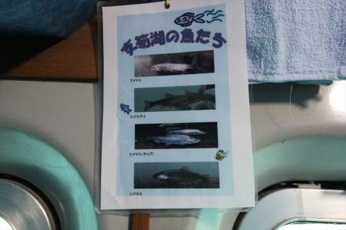 支笏湖観光船 (45)_R