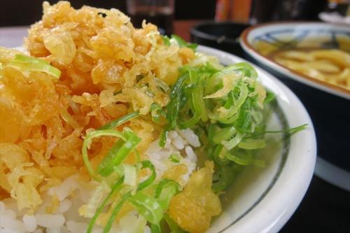 丸亀製麺㉝ (6)_R