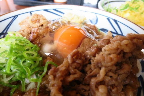 丸亀製麵㊱ (6)