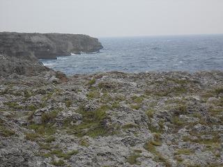 s-2015沖縄 171