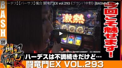 楓☆ 闘竜門EX vol.293