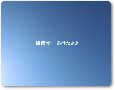 CIMG9024.jpg