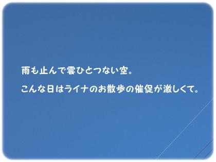 CIMG9679.jpg