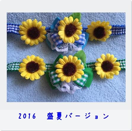 IMG_3140-1.jpg