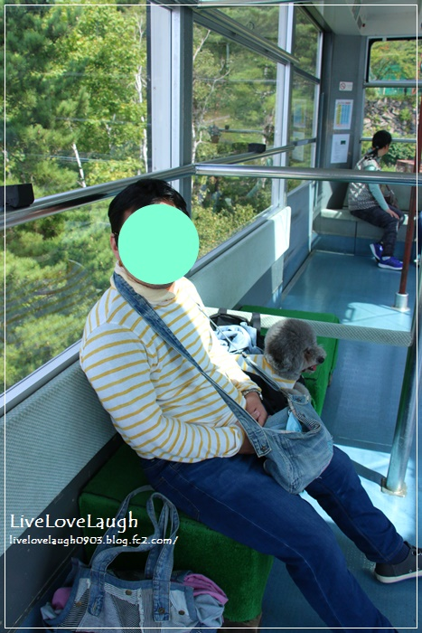 IMG_5377なつ16-6-3