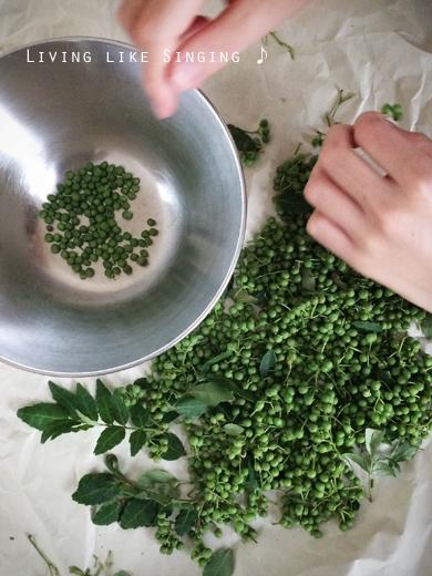 実山椒の台所仕事