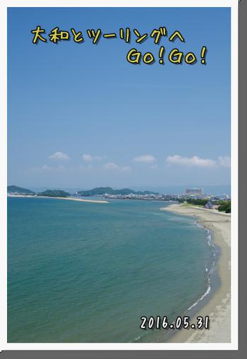 2016年5月31日 海南・磯ノ浦・加太 (6)