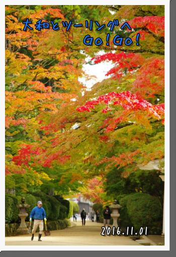 2016年11月1日 高野山ツーリング (13)