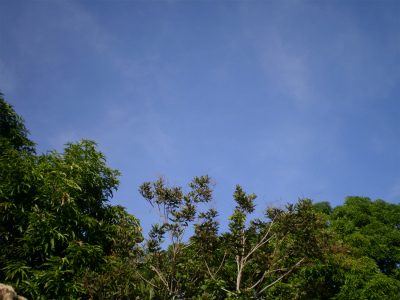 P9120076.jpg