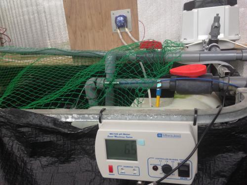Aquaponics pH自動調整システム
