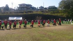 2016 K9クラブ愛媛 犬の運動会