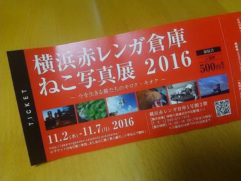 201611-DSC_2097.jpg