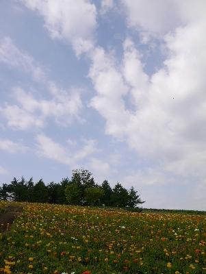 春の那須25