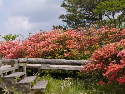 春の那須3−17