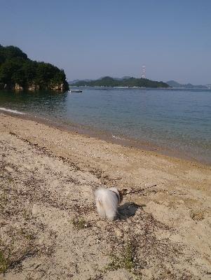 2016夏休み2−6