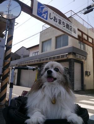 2016夏休み4−15