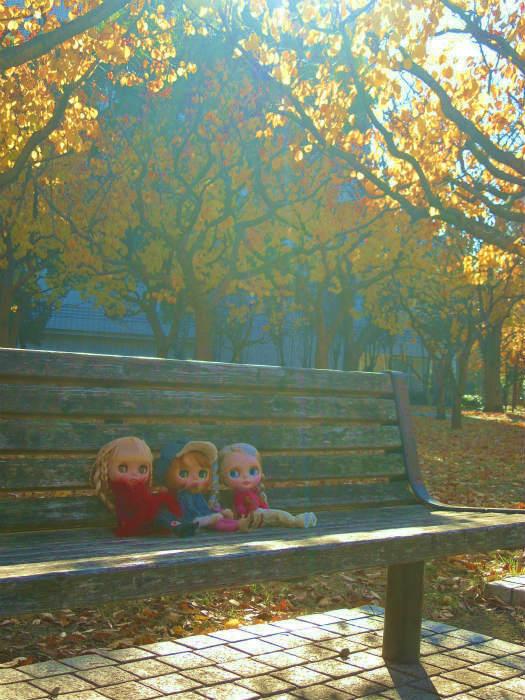 秋の公園34