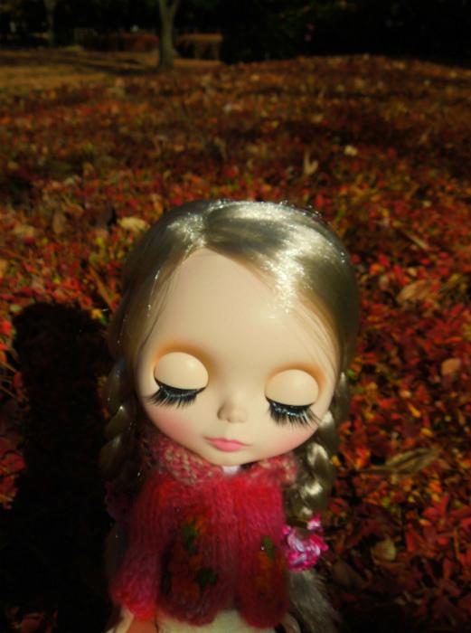 秋の公園33