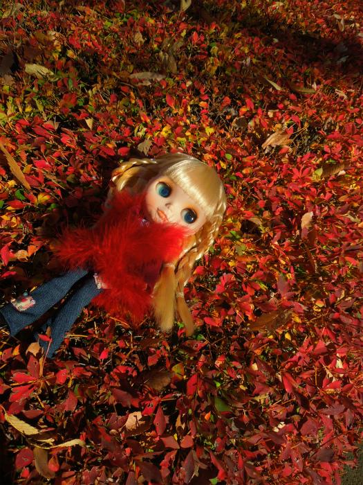 秋の公園30