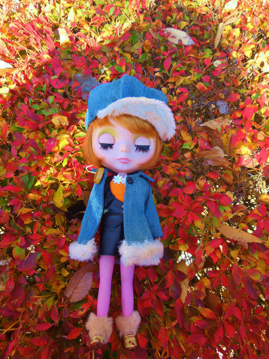 秋の公園28
