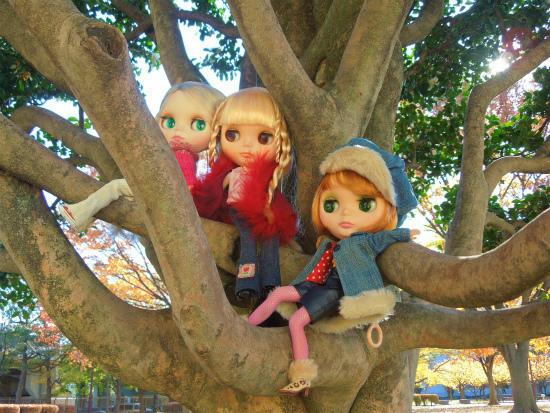 秋の公園27
