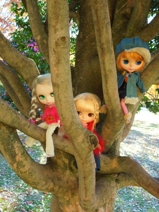 秋の公園25