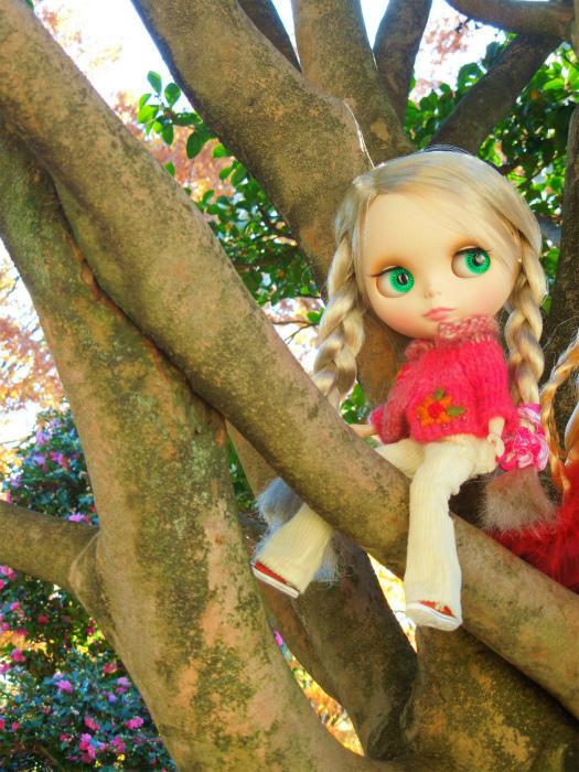 秋の公園22
