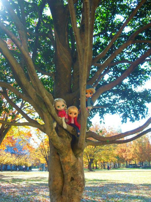 秋の公園20