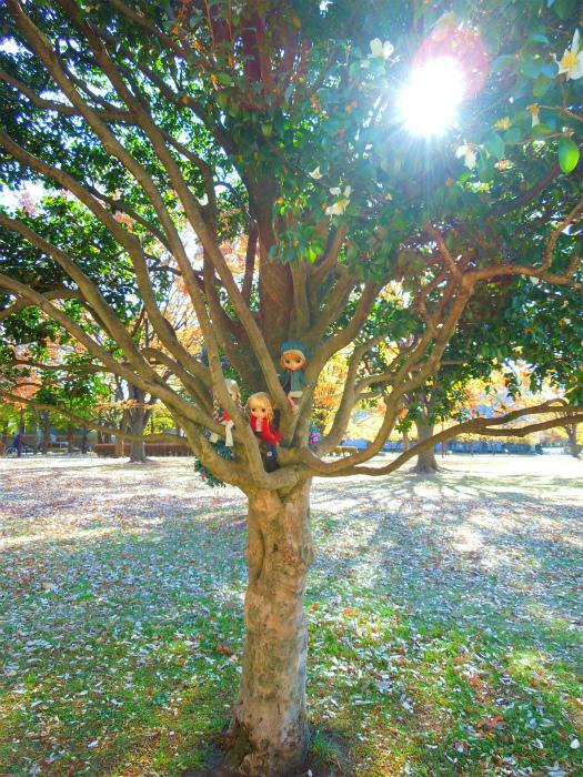 秋の公園18