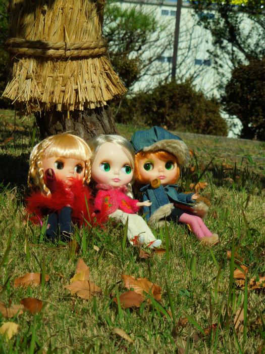 秋の公園16