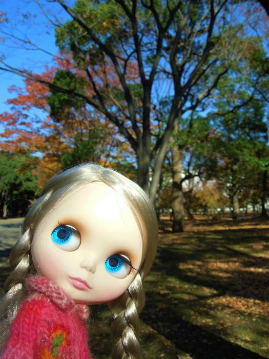 秋の公園14