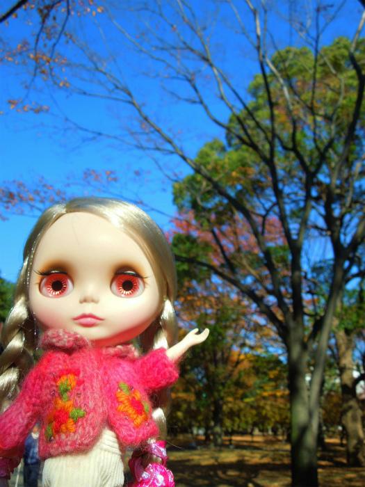 秋の公園13