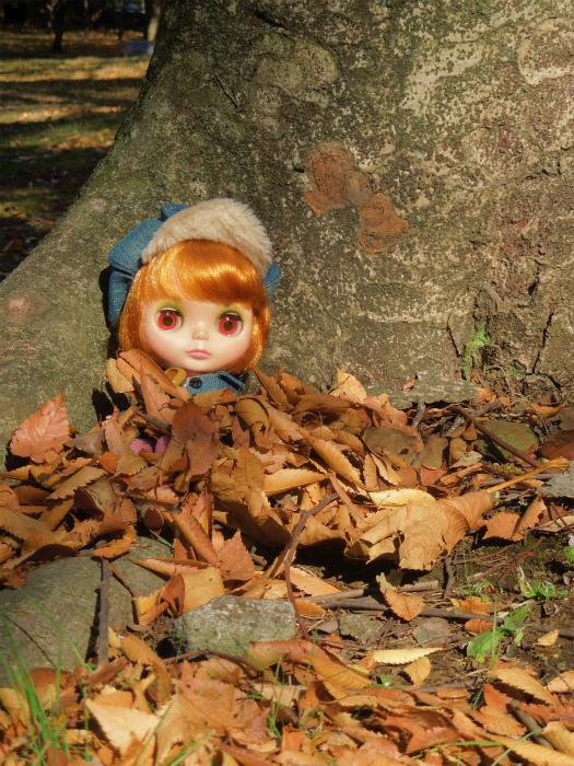 秋の公園12