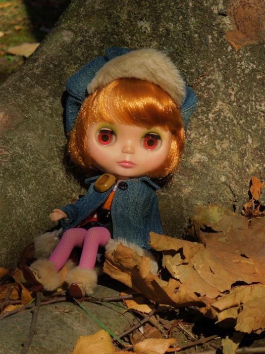秋の公園11