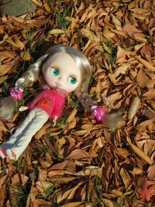 秋の公園10