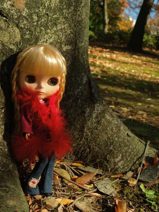 秋の公園8