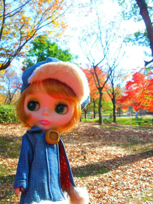 秋の公園7