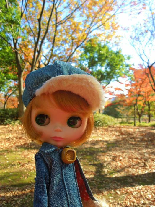 秋の公園6